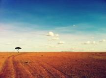 Viaggiatrici solitarie: 4 libri da non perdere