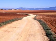 Itinerari a piedi: i cammini più belli da fare in Italia