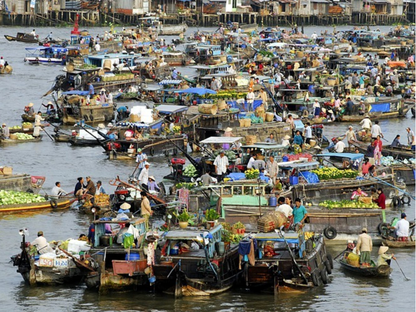 Cai rang marcato galleggiante vietnam