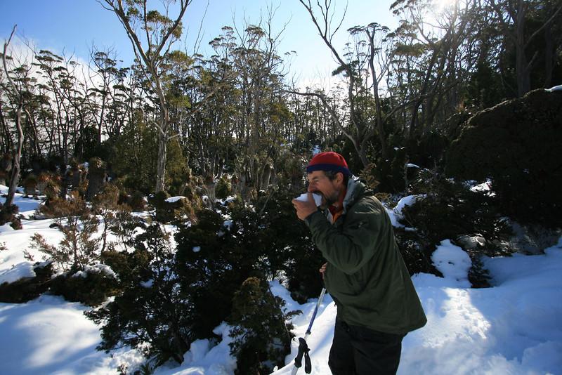 Tasmania - Foto Pete Wyllie