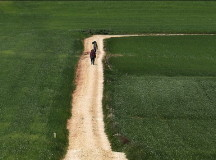 8 buoni motivi per iniziare a viaggiare a piedi
