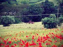Italia coast to coast: il cammino in solitaria di Matteo Sala
